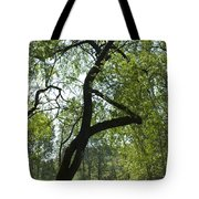 Tree Dali Tote Bag