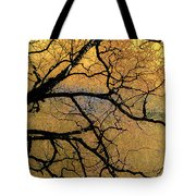 Tree Fantasy 7 Tote Bag