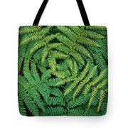 Tree Fern Fronds Tote Bag