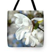 Tree Floral Garden White Magnolia Tote Bag