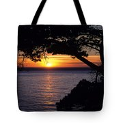 Tree Framing Seascape Sunset Tote Bag by Ali ONeal - Printscapes