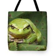 Tree Frog En Face Tote Bag by Roeselien Raimond