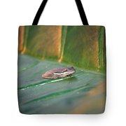 Tree Frog IIi Tote Bag