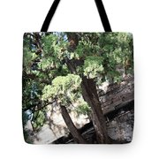 Tree Growing Through Wall Tote Bag