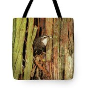 Tree Home Tote Bag