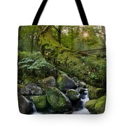 Tree Tote Bag