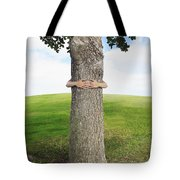 Tree Hugger 3 Tote Bag