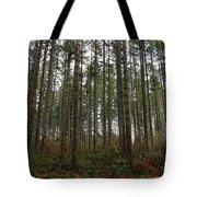 Tree Hugger's Paradise Tote Bag