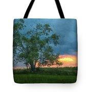 Tree Impression Tote Bag
