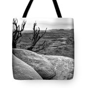 Tree In A Desert Tote Bag