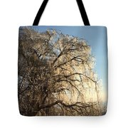 Tree In Ice Tote Bag