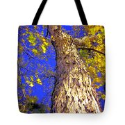 Tree In Motion Tote Bag