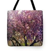 Tree In Pink Tote Bag