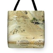 Tree In The Desert Tote Bag