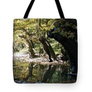 Tree In The River Tote Bag
