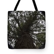 Tree In The Round Tote Bag
