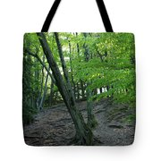Tree In The Woods Tote Bag