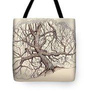 Tree In Winter II Tote Bag