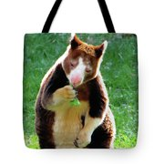 Tree Kangaroo Tote Bag