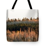 Tree Layer Cake Tote Bag