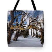 Tree Life In Winter Tote Bag