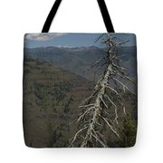 Tree Look Out Tote Bag