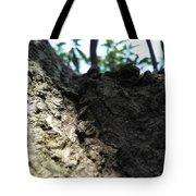 Tree Macro View Tote Bag