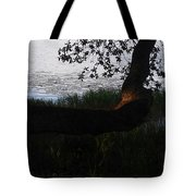 Tree Near The Water3 Tote Bag