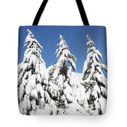 Tree-o Of Evergreens Tote Bag