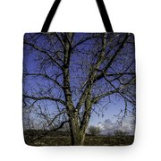 Tree Of Blue Tote Bag