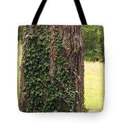 Tree Of Ivy Tote Bag