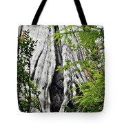Tree Of Life - Duncan Memorial Big Western Red Cedar Tote Bag by Christine Till