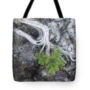 Tree On Rock Tote Bag