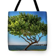 Tree On The Bay Tote Bag