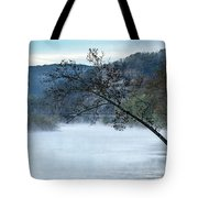 Tree Over Gasconade River Tote Bag