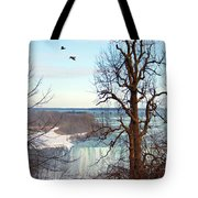 Tree Overlooking The Falls Tote Bag