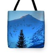 Tree Pano Tote Bag