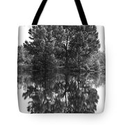 Tree Reflection In Black And White Tote Bag