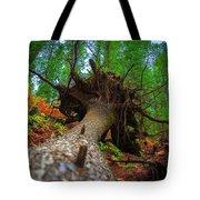 Tree Root Ball Tote Bag