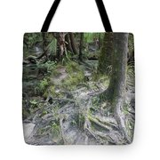 Tree Roots And Lithia Springs Tote Bag