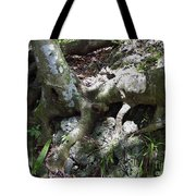 Tree Roots On The Bank Tote Bag