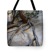 Tree Roots On The Tent Rock Tote Bag