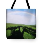 Tree Shadow Tote Bag