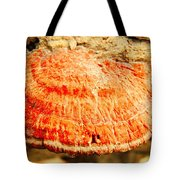 Tree Shell In Shades Of Pumpkin Tote Bag