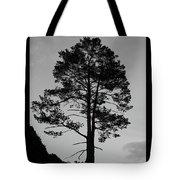 Tree Silhouette In The Dark Tote Bag