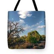 Tree Sky Utah Tote Bag