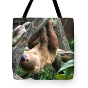 Tree Sloth Tote Bag