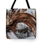 Tree Stump Arch Tote Bag