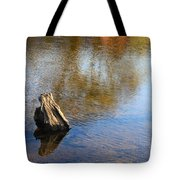 Tree Stump Surrounded By Water Tote Bag