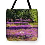 Tree Stumps In Common Heather Field Tote Bag